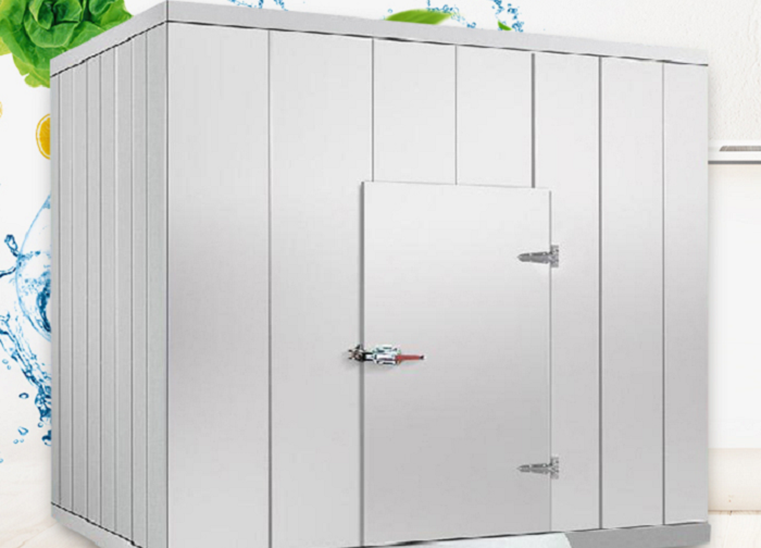 How to choose the commercial refrigerator when it comes to your growing business?